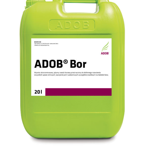 ADOB Bor